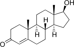 tetosterone